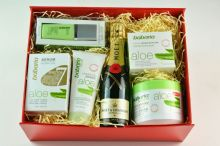 Babaria Aloe Vera Skin Care and Champagne Gift Set